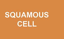 3-types_squamous